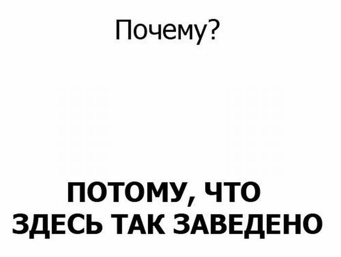 obezyana-0009