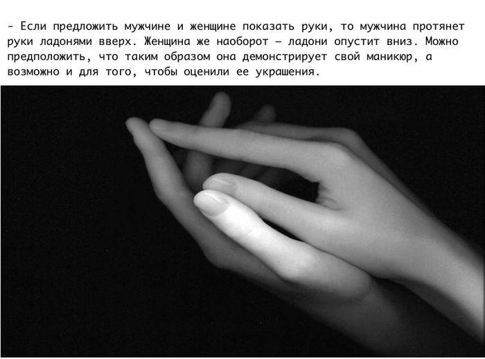 pro_jenshin_02
