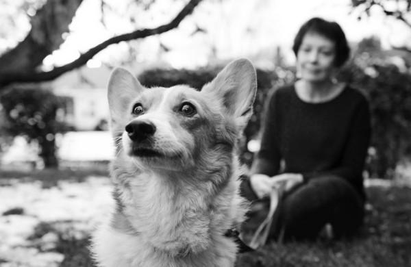 dog__14