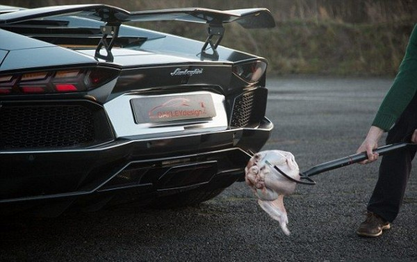 lamborghini_roasted_turkey_01