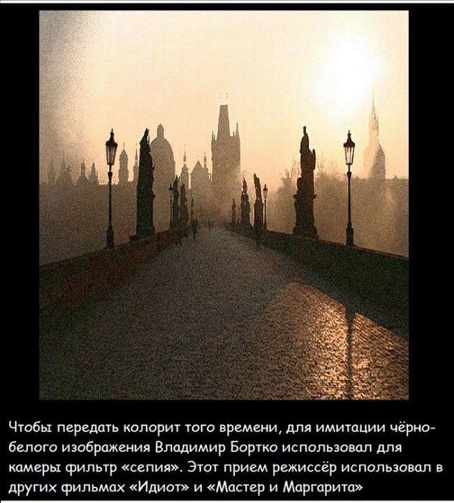 sobachie_serdce_06