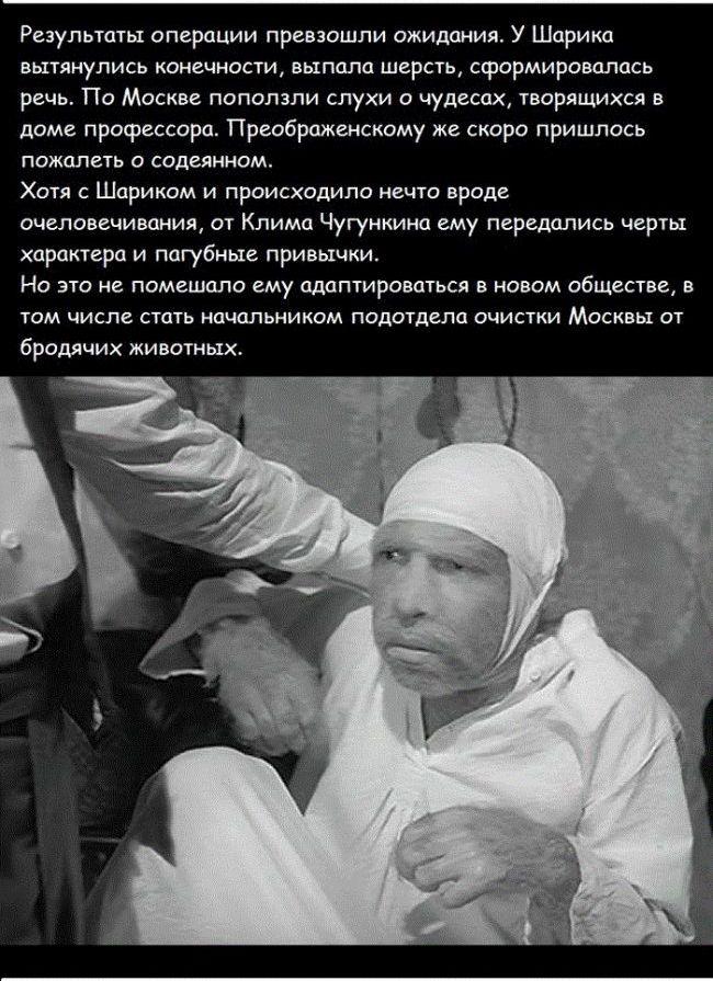 sobachie_serdce_12