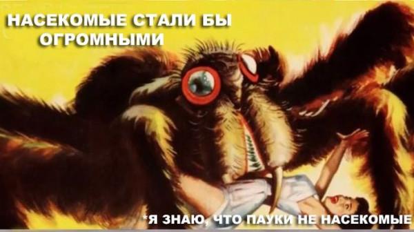 kislorod_20
