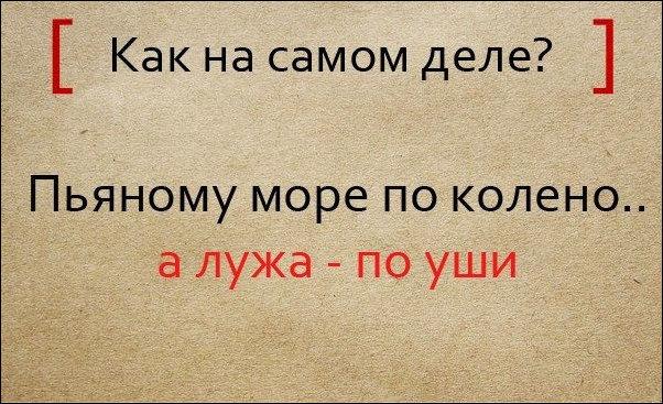 pogovorki_01