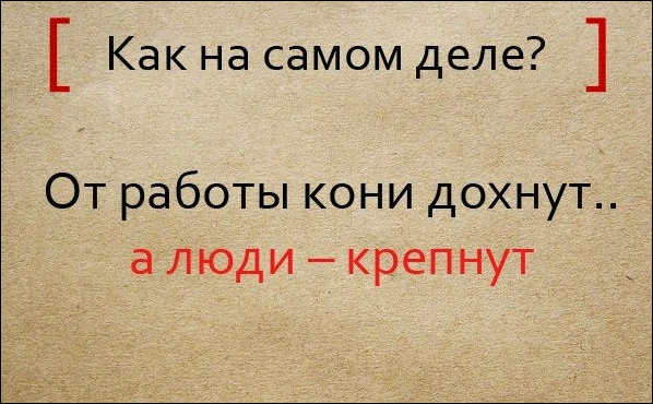 pogovorki_04