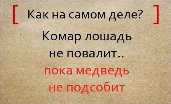 pogovorki_07