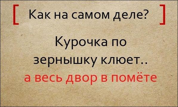pogovorki_12