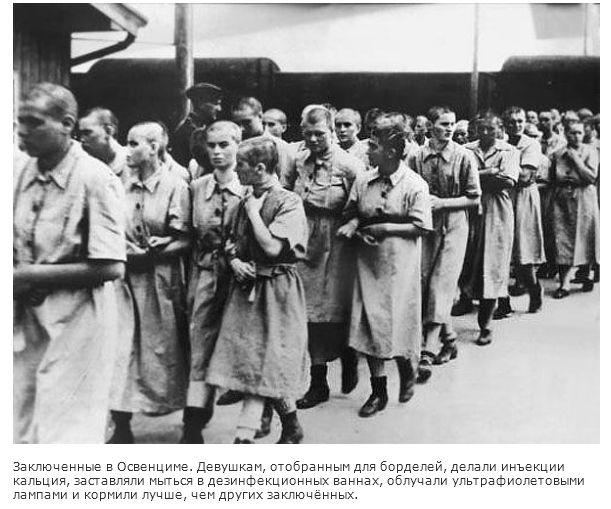 Порно архивы гитлеровской германии