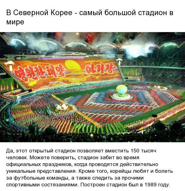 fact_koreya_06