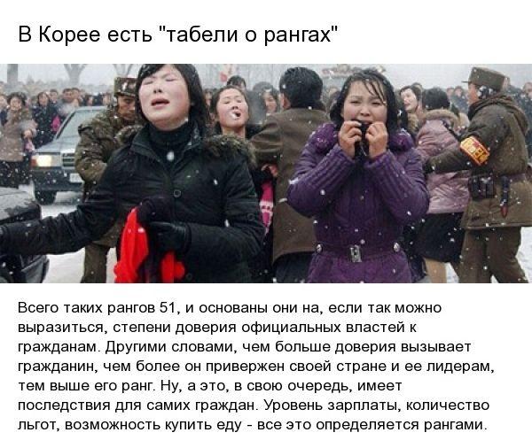 fact_koreya_08