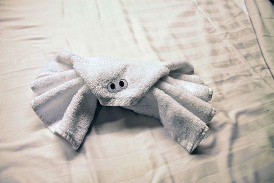 origami_towel_05