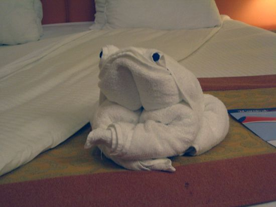 origami_towel_14