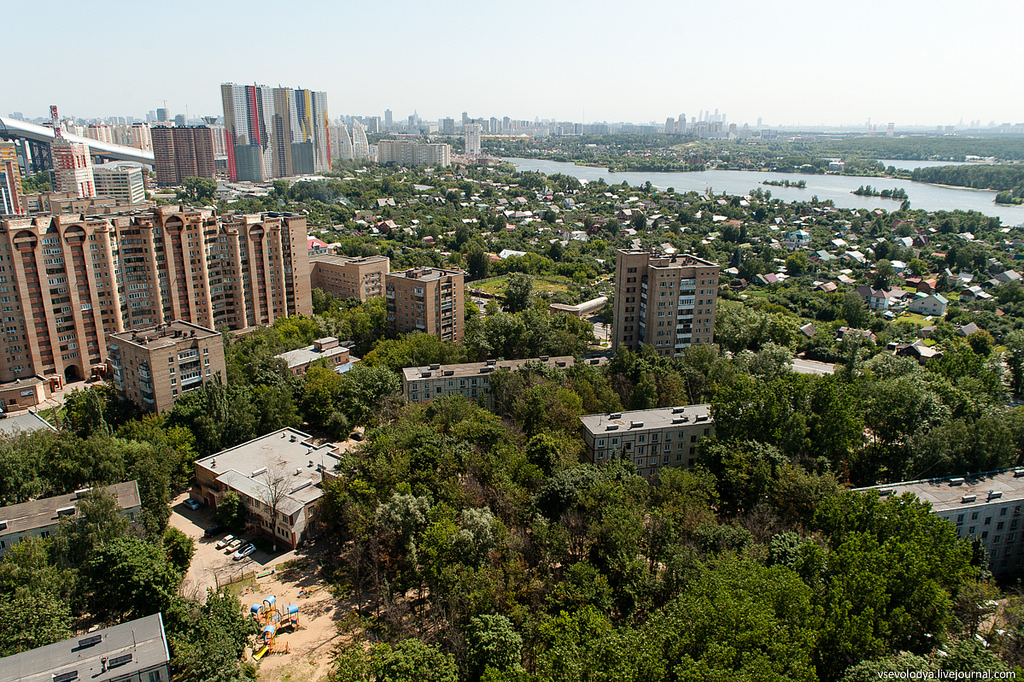 всего фото района вокзальной улицы г красногорск городского голубя горлица