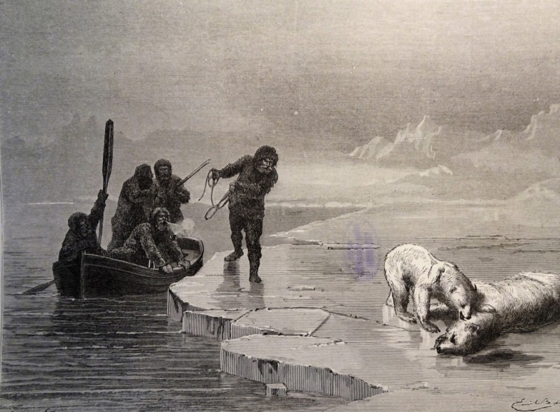 Охота на белого медведя. Гравюра XIX века