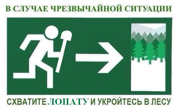 чс-черезвычайная-сетуация-лопата-лес-732951