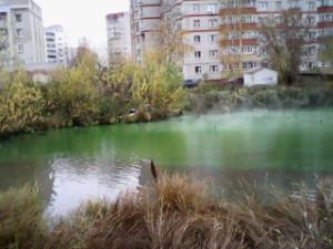 IMG_20141014_152351