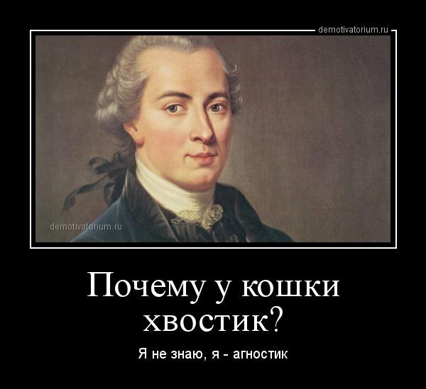 demotivatorium_ru_pochemu_u_koshki_hvostik