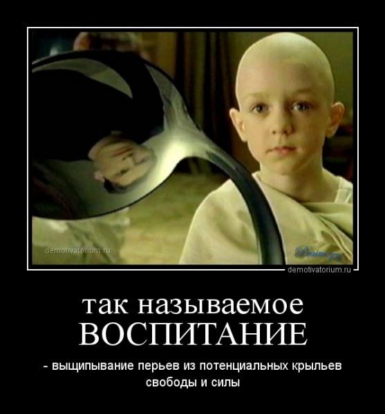 demotivatorium_ru_tak_nazivaemoe_vospitanie