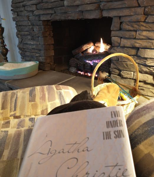 reading by the fire jan 29.jpg