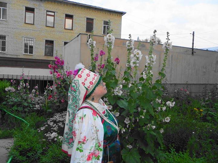 Мальвы цветут!