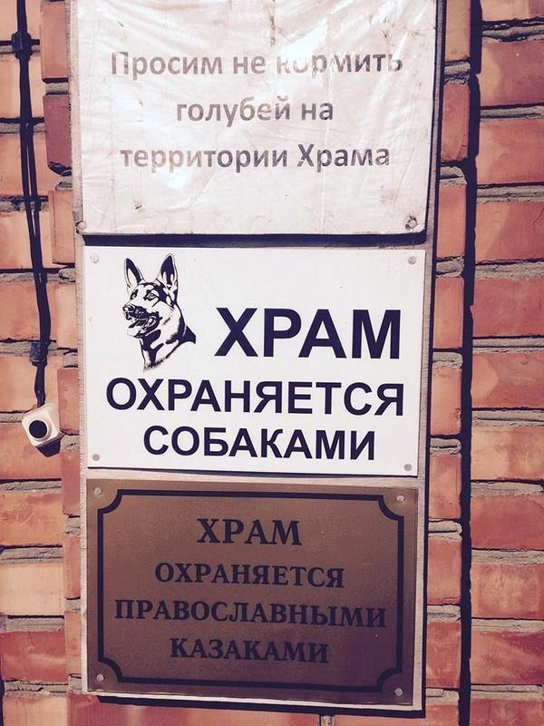 Германия призвала Украину и Россию воздержаться от эскалации в ситуации с Крымом - Цензор.НЕТ 1557