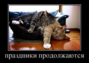 12522_prazdniki-prodolzhayutsya_demotivators_to
