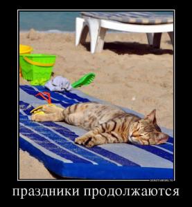365902_prazdniki-prodolzhayutsya_demotivators_to