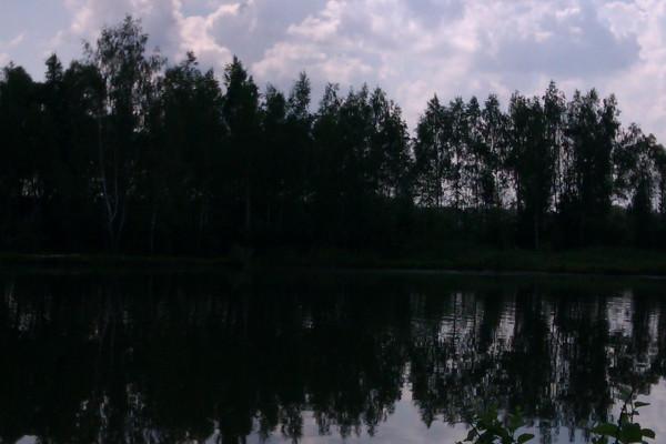 IMAG1284