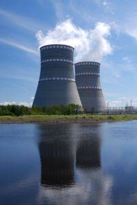 Заложникам атомной авантюры остается