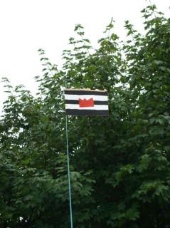 Официальный флаг Картонии
