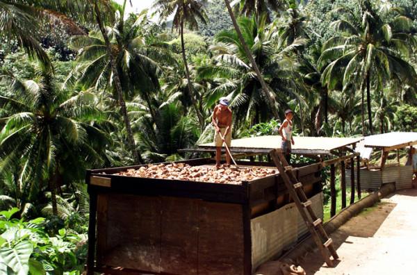 кокосовое масло литр