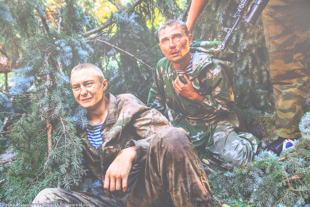 Спасти Андрея Стенина