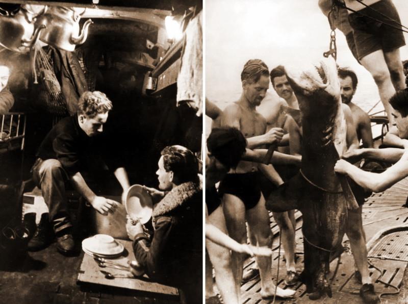 Мытьё посуды на подводной лодке после приёма пищи (слева).Судя по растительности на лицах подводников, поход длится не первую неделю, и никто не против разнообразить меню свежей рыбой. На фото разделка акулы на палубе немецкой подлодки (справа)