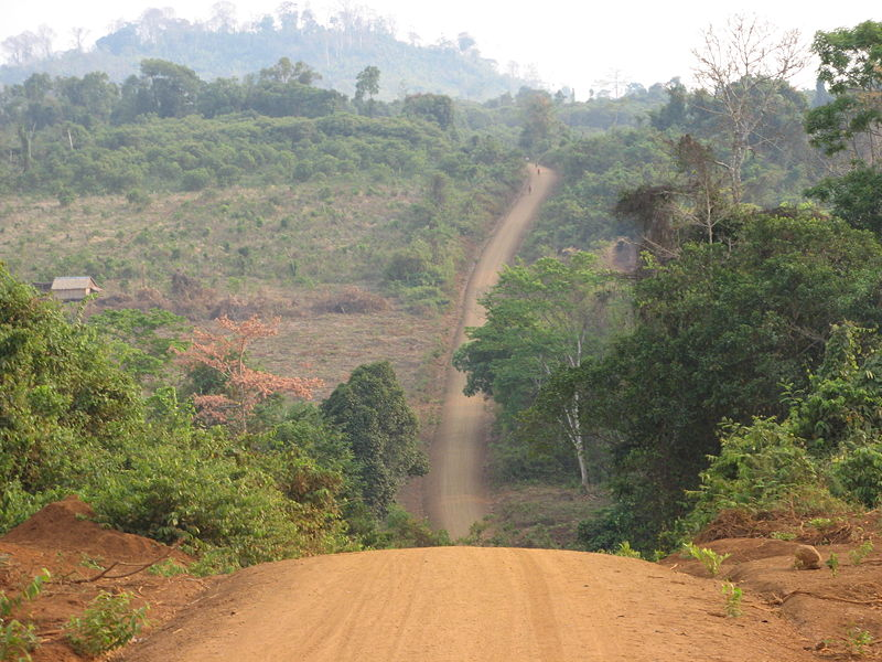 Вот такая красотень - взято отсюда http://www.tourismcambodia.com/