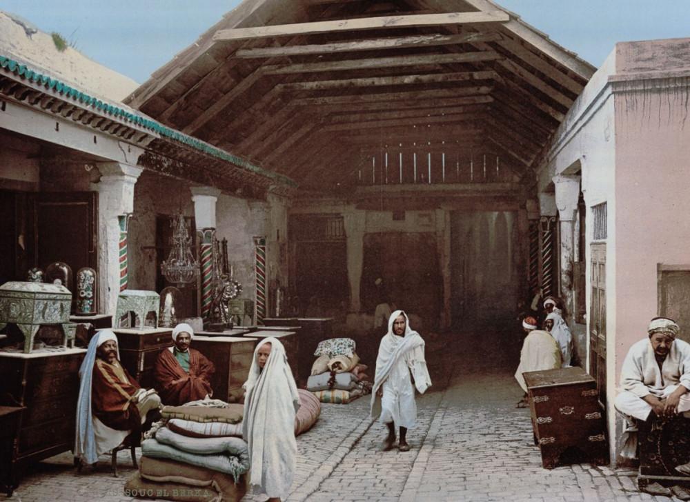 На развалинах Карфагена