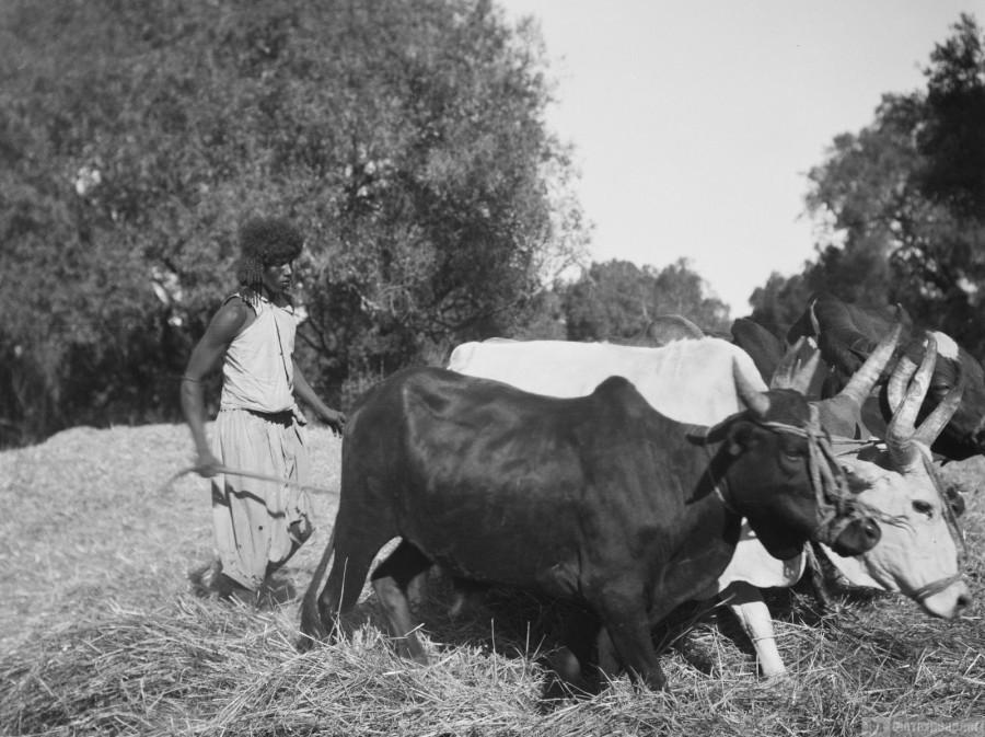 Накануне италия и ее история