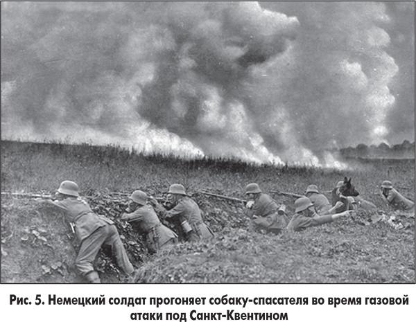 Газы россия и ее история