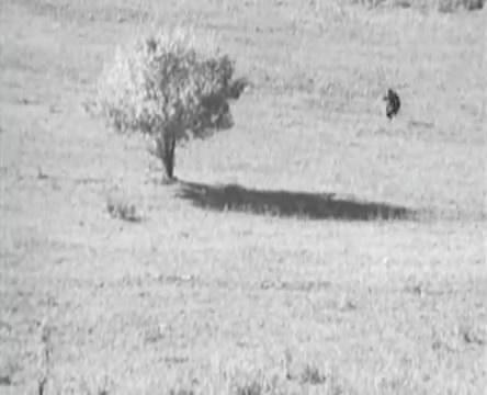 Танкисты (1939).mp4_snapshot_01.12.21_[2016.05.15_12.58.54]