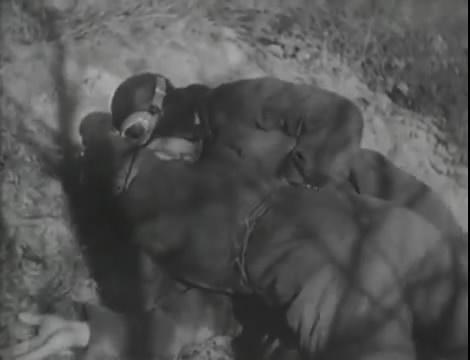 Эскадрилья №5 _ Война начинается (1939).mp4_snapshot_00.47.30_[2016.05.20_11.58.13]