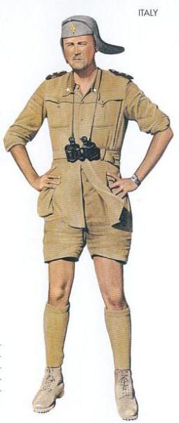Italy - 1940 Aug., Sidi Azeis, Lieutenant, Infantry Division