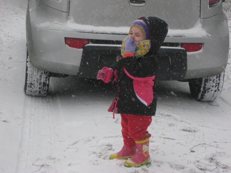 Snow Days (12)