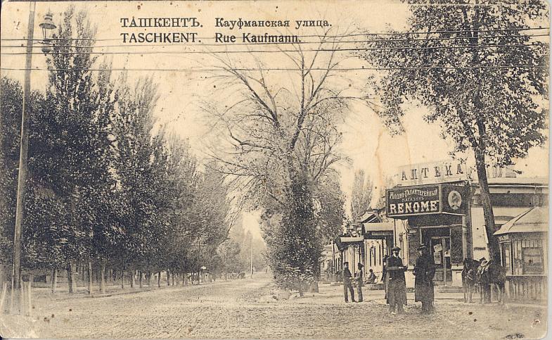 kaufmanskaya343434