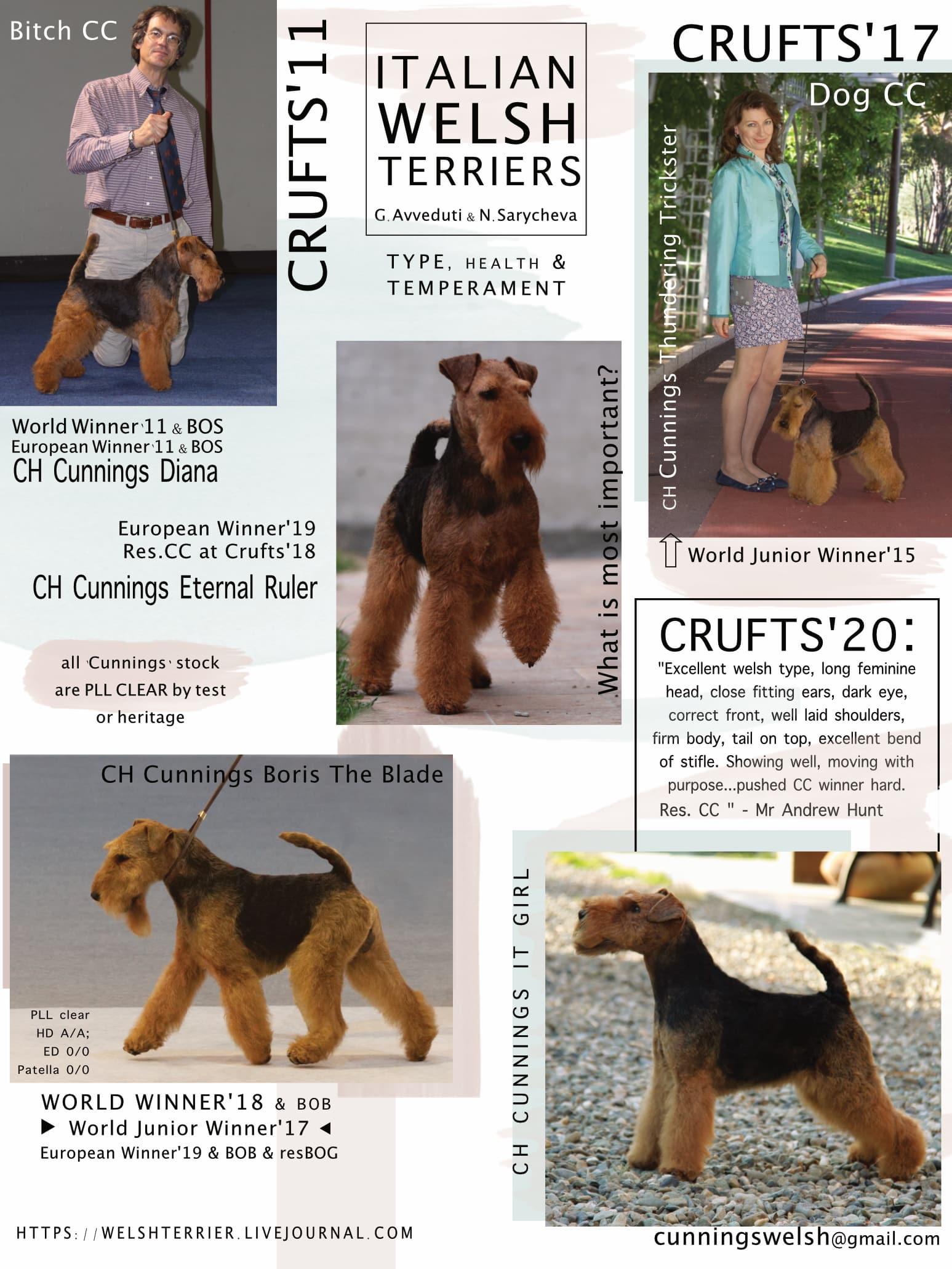 Cunnings Welsh Terriers Template.jpg