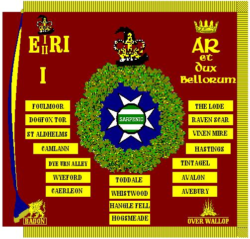 Regimental Colour, Wessex Aurors