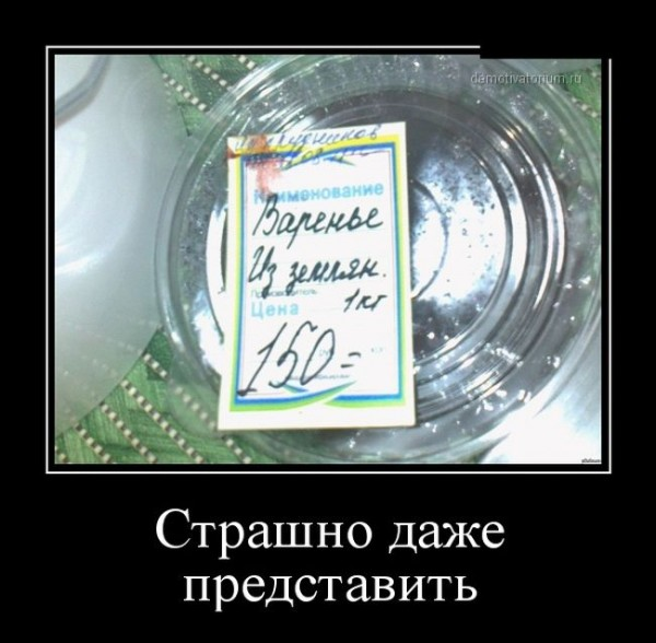 1258964_1000.jpg