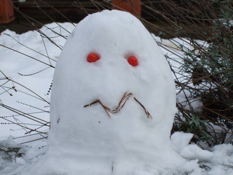 snow pacman2