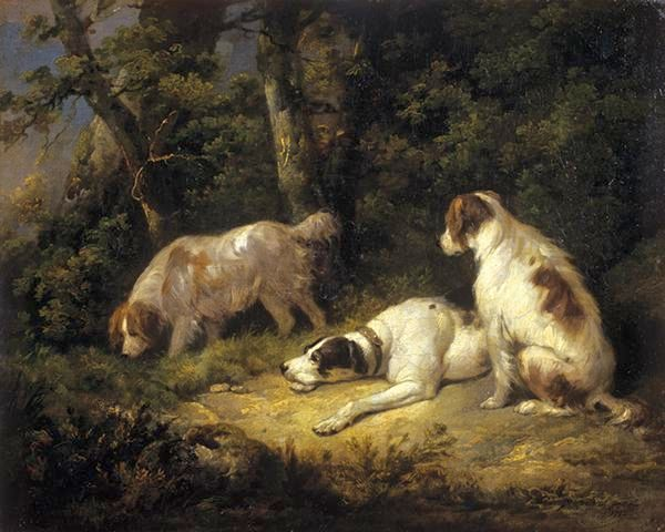 Джордж Морланд - мои собаки