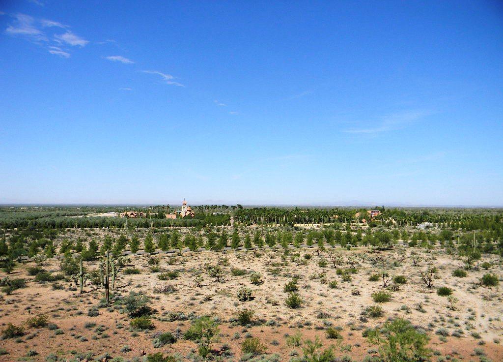 Arizona68