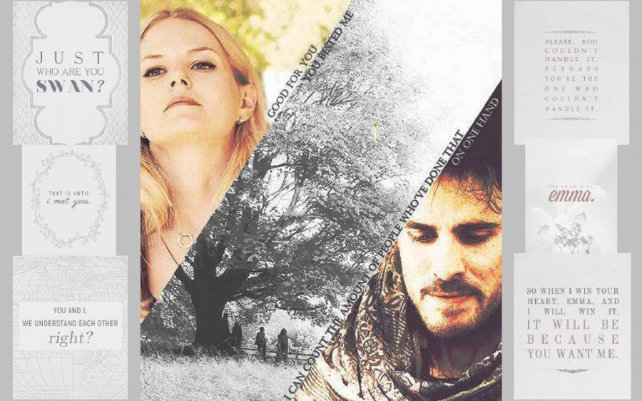 grey captain swan