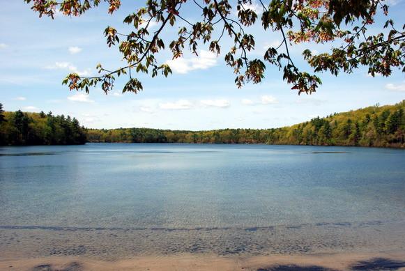 web_7969 Walden spring vista color exp